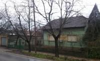 Kuca, Novi Sad, Telep
