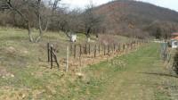 Domaćinstvo sa sopstvenim vodovodom, izlazi na potok, 10 hektara, izvor na parceli, hrastova šuma…